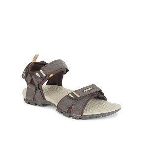 Sparx Men'S  Floater Sandals SS-481 Brown